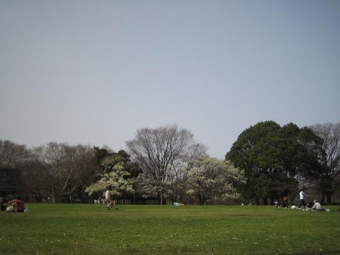 砧公園 写真 102 (3).JPG