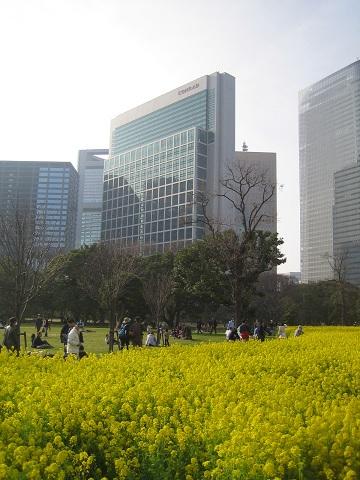 築地・浜離宮公園 写真 064 (13).JPG