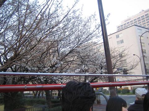 築地・浜離宮公園 写真 064 (33).JPG